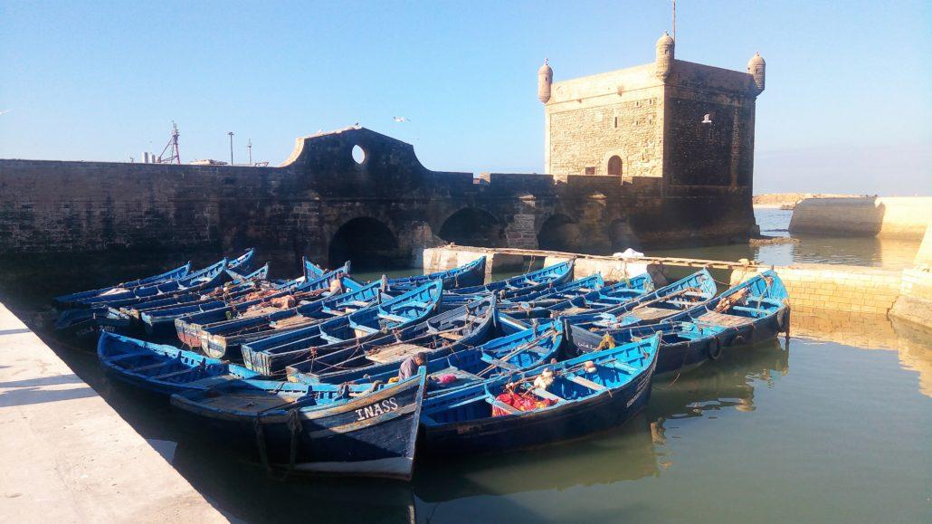 barche blu essoauria
